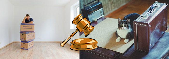 Человек с коробками и чемоданами, и решение суда