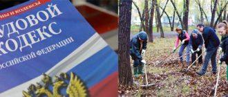 Трудовой Кодекс РФ и субботник