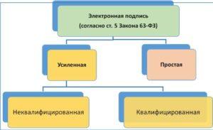Схема видов подписей