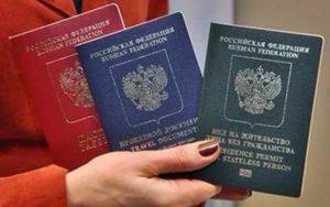 Паспорт, РВП и ВНЖ РФ